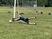 Ty Nolon Men's Soccer Recruiting Profile