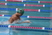 Harrison Miller Men's Swimming Recruiting Profile