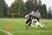 Tanner Merwin Football Recruiting Profile
