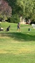 Kyson Christensen Men's Golf Recruiting Profile