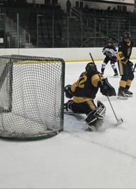 Tanner Wild's Men's Ice Hockey Recruiting Profile