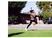 Kayla Gibson Women's Track Recruiting Profile
