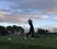 Mario Mateo Serrano Men's Golf Recruiting Profile