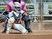 Dominique Soto Softball Recruiting Profile