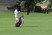 Pate Stansell Men's Golf Recruiting Profile