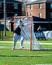 Nolan Pascu Men's Lacrosse Recruiting Profile