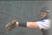Chesnee Fairall Softball Recruiting Profile