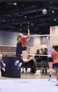 Cameron Davenport's Women's Volleyball Recruiting Profile