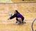 Kaylee Gray Women's Volleyball Recruiting Profile
