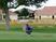Aaron Reardon Men's Golf Recruiting Profile
