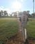 Ethan Kippes Baseball Recruiting Profile