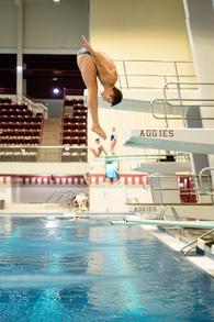 Carter Wood's Men's Diving Recruiting Profile