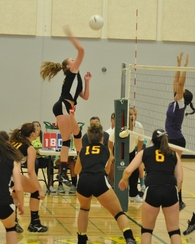 Nicole Lee's Women's Volleyball Recruiting Profile
