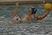 Madelyn Koerper Women's Water Polo Recruiting Profile