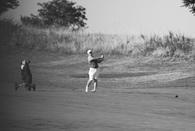 Drew Stultz's Men's Golf Recruiting Profile