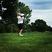 Cade Carpenter Men's Golf Recruiting Profile