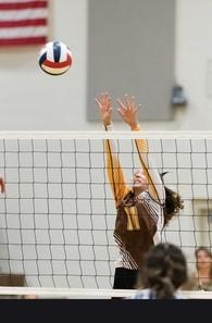 Malia Hedges's Women's Volleyball Recruiting Profile