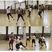 Rashad Rayford Men's Basketball Recruiting Profile