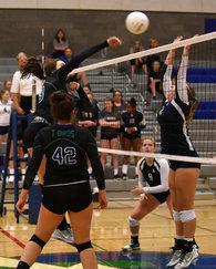 Madison Galiardi's Women's Volleyball Recruiting Profile