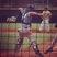 Koltyn Plumb Baseball Recruiting Profile