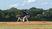 Nick Bennett Baseball Recruiting Profile