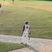 Trevor Vernon Baseball Recruiting Profile