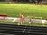 Allie Binder Women's Track Recruiting Profile