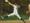 Athlete 1970259 small