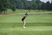 Abby Hamman Women's Golf Recruiting Profile