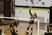Sloane Magill Women's Volleyball Recruiting Profile