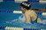 Cassandra Muldoon Women's Swimming Recruiting Profile