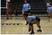 Micaiah Davis Women's Volleyball Recruiting Profile