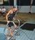 Ginah-Marie Marten Women's Swimming Recruiting Profile