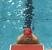 Geoffrey Dixon Men's Swimming Recruiting Profile