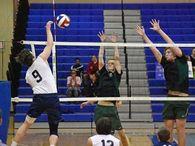 Treyton Stepler's Men's Volleyball Recruiting Profile