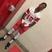Terry Lang Jr Football Recruiting Profile