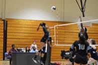 Arianna Pankey's Women's Volleyball Recruiting Profile