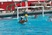 """Berryman """"Shaughnessey"""" Smith Men's Water Polo Recruiting Profile"""