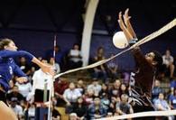 Michelene Coleman's Women's Volleyball Recruiting Profile