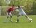 Alec Niehoff Men's Soccer Recruiting Profile