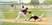 Brady Vineyard Baseball Recruiting Profile