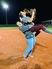Stephanie Sparks Softball Recruiting Profile