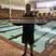 Alexander MacLeod-Boyd Men's Swimming Recruiting Profile