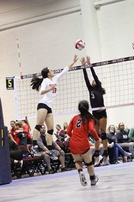 Willow Taylor Yang's Women's Volleyball Recruiting Profile
