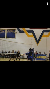 Haleigh Brown's Women's Volleyball Recruiting Profile