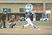 Mykah Johnson Baseball Recruiting Profile