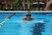 Jenna Angelucci Women's Swimming Recruiting Profile