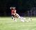 Blaise Gunnerson Football Recruiting Profile