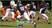 Roddell Bebbs Football Recruiting Profile