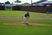 Sean Wahlfeldt Baseball Recruiting Profile